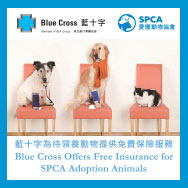 SPCA x Blue Cross - Care for Pet 智得寵