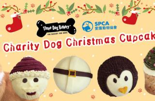Three Dog Bakery x SPCA Charity Dog Christmas Cupcakes