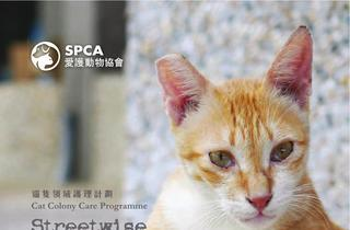 SPCA Cat Colony Care Programme - Streetwise 2014